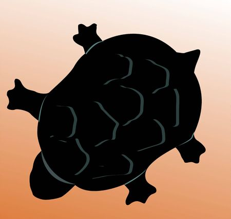 brownish: Illustration of Turtle in brownish background