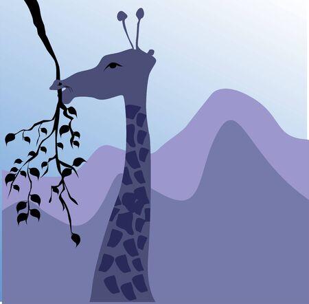 nostril: Illustration of a giraffe heading to eat leaf