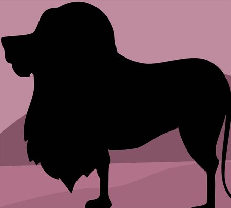 cougars: Illustration of a silhouette of lion  Stock Photo