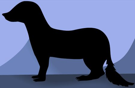 mongoose: Illustration of a silhouette of a mongoose  Stock Photo