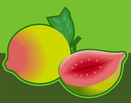 Illustration of red guavas in green background  illustration