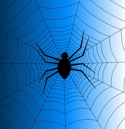 Illustration of a spider in cobweb illustration