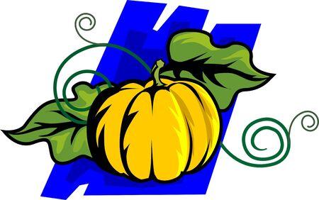Illustration of a pumpkin with leaf  illustration