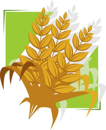 Illustration of a wheat in a green background Stock Illustration - 4050605