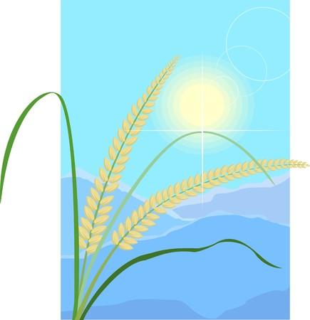 Illustration of wheat hills and sun Stock Illustration - 4050586