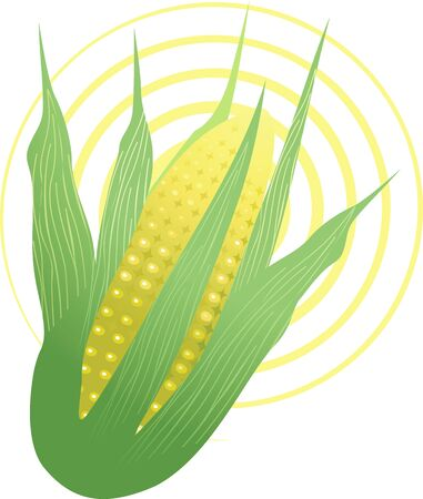 Illustration of Indian corn in a yellow design background Stock Illustration - 4050614