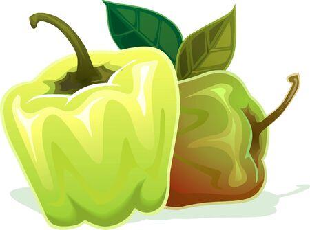capsicum: Illustration of capsicum with leaf