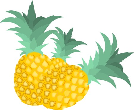 Illustration of three pineapples in a white background illustration