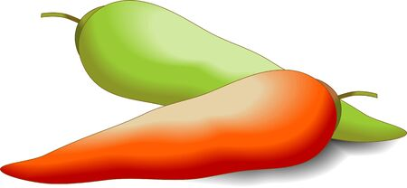 Illustration of two red and green chillies Stock Illustration - 4136293