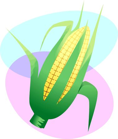 Illustration of Indian corn in a colorful background Stock Illustration - 4136387