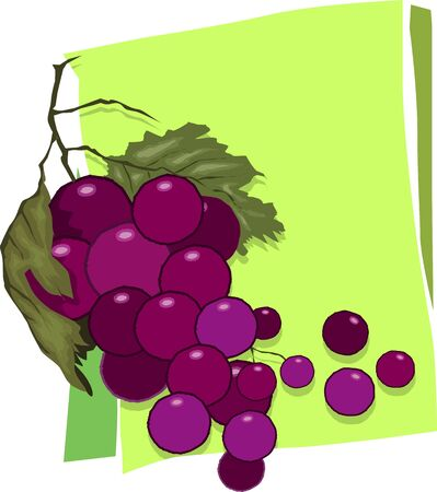 fruitful: Illustration of bunches of grapes with leaves