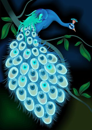 The artist is experiencing the beauty of peacock along with its feathers which is taking rest on a branch