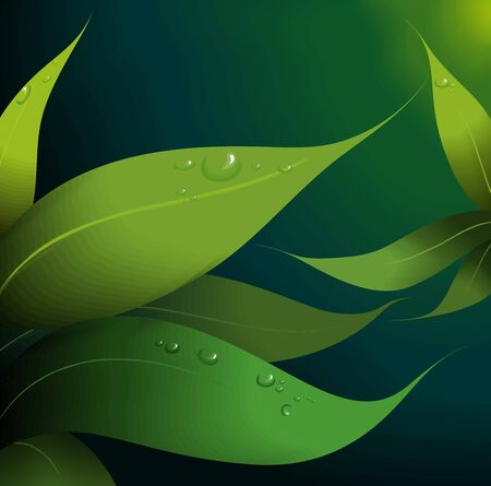 rowth: Illustration of leaf pattern with the background