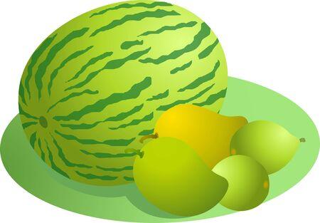 Illustration of mango and watermelon illustration