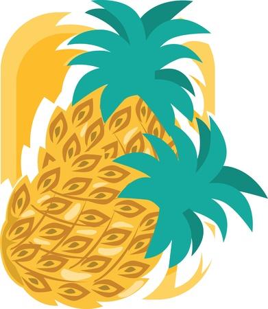 pine apple: Pineapple  Illustration