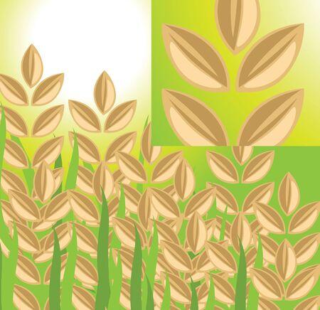 Rice plant Stock Vector - 13185003