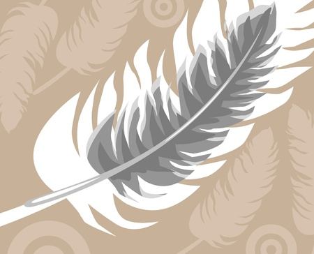 feather Stock Photo - 13377370