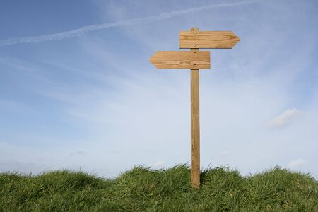 undefined: Wooden direction sign in grass, clipping path included