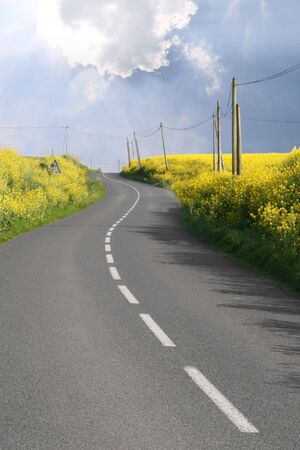 overrun: Curved road through overflowing rape fields Stock Photo