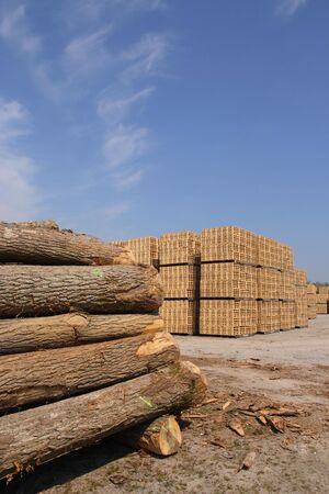 sawn: Sawn trees and wooden packing crates (vertical)
