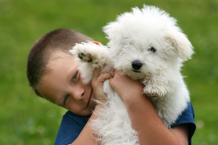 Happy boy bearing a puppy in his arms Stock Photo