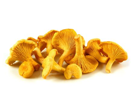 Chanterelles isolated on white, delicious mushroom