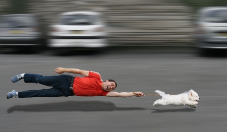 Disobedient dog running and dragging a man by the leash Standard-Bild