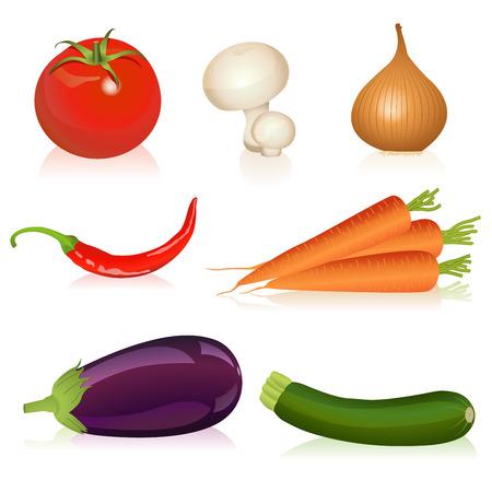 aubergine: Illustration von Tomaten, Champignons, Zwiebeln, Karotten, Chili, Auberginen und Zucchini