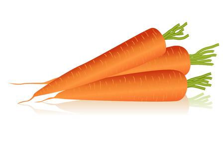 Ilustración de zanahorias