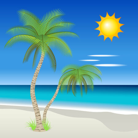 Vector illustration of palm trees on a tropical beach Vector