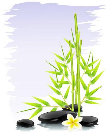 massage therapie: Zen samenstelling
