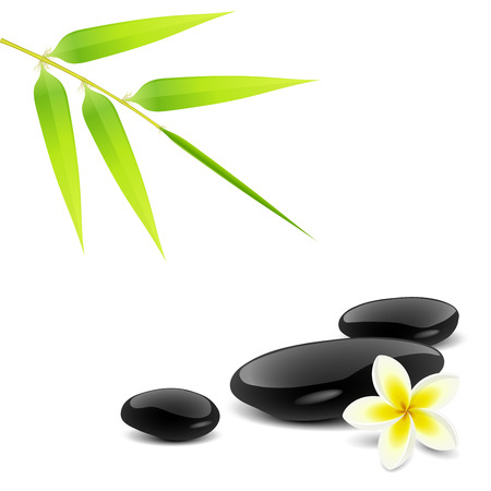 massage stones: Zen theme with bamboo and black stones Illustration