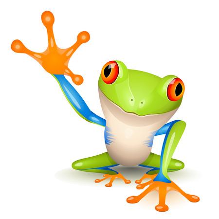 caricaturas de ranas: Ranita de �rbol Vectores