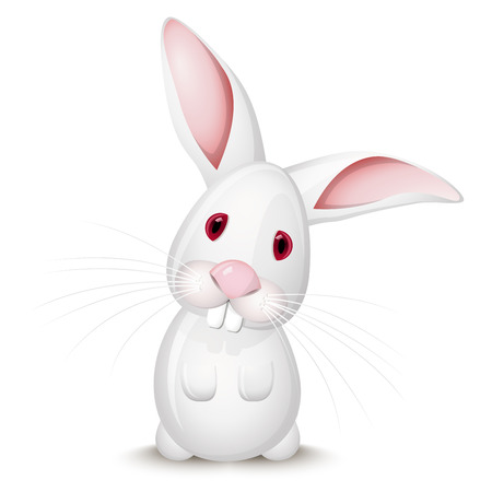 wit konijn: Weinig wit konijn geïsoleerd op witte achtergrond