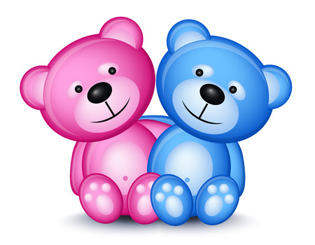 Teddy bear couple isolated on white background Vector