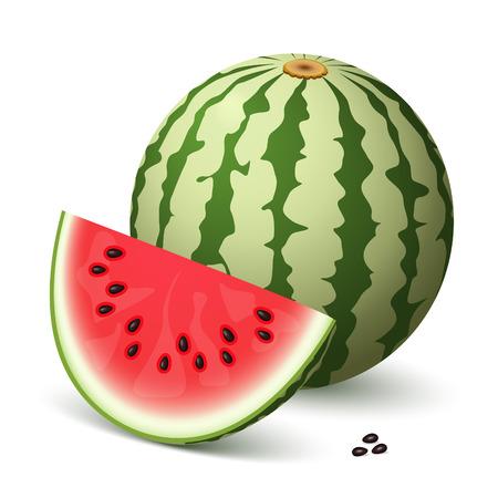 A delicious watermelon and a slice Vector