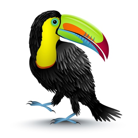 toucan: illustration of a toucan Illustration