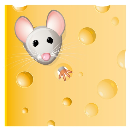 gruyere: A mouse eating a piece of cheese  Illustration
