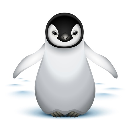 pinguino: Ping�ino emperador de beb� en la nieve