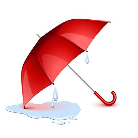 lluvia paraguas: H�medo paraguas rojo despu�s de la lluvia