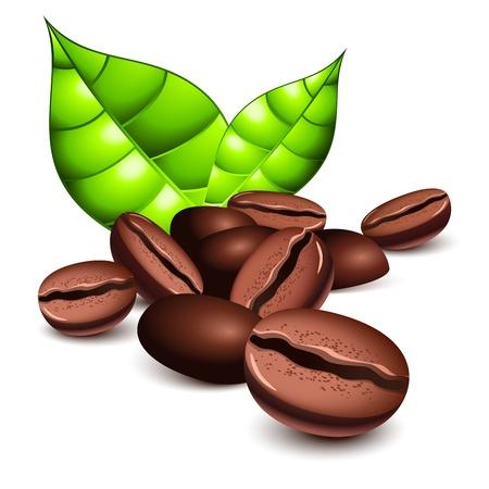 frijoles: Granos de caf� y hojas Vectores