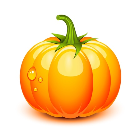 fall harvest: Halloween pumpkin in a glossy style Illustration