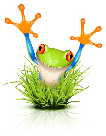 Little tree frog on reflective grass Illustration