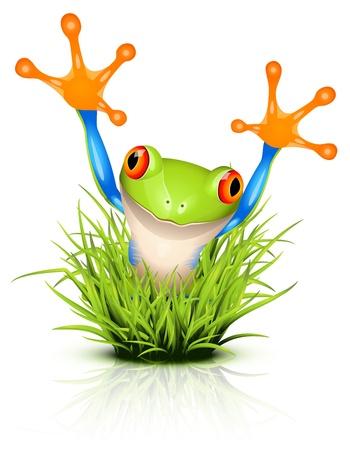 grenouille: Petite grenouille d'arbre sur l'herbe de réflexion Illustration