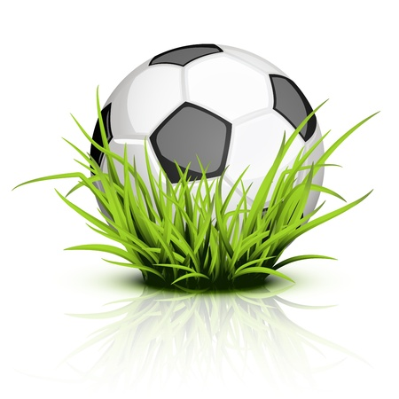Shiny soccer ball on reflecting grass
