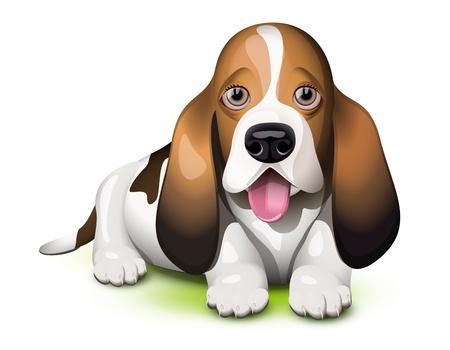Basset Hound pup steekt zijn tong uit