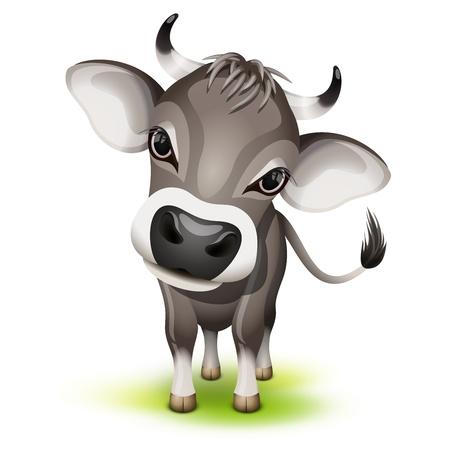 vaca caricatura: Vaquita suiza con la cabeza ladeada Vectores