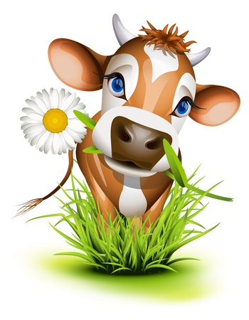 cow head: Jersey cow in green grass Illustration