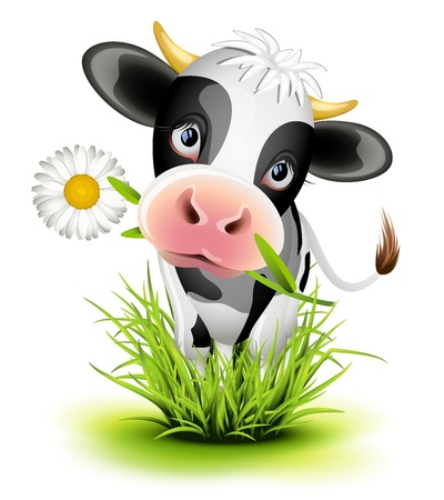 dairy cattle: Cute Holstein cow in green grass Illustration