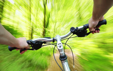 Riding bike fast through the forest Stock Photo - 20879239